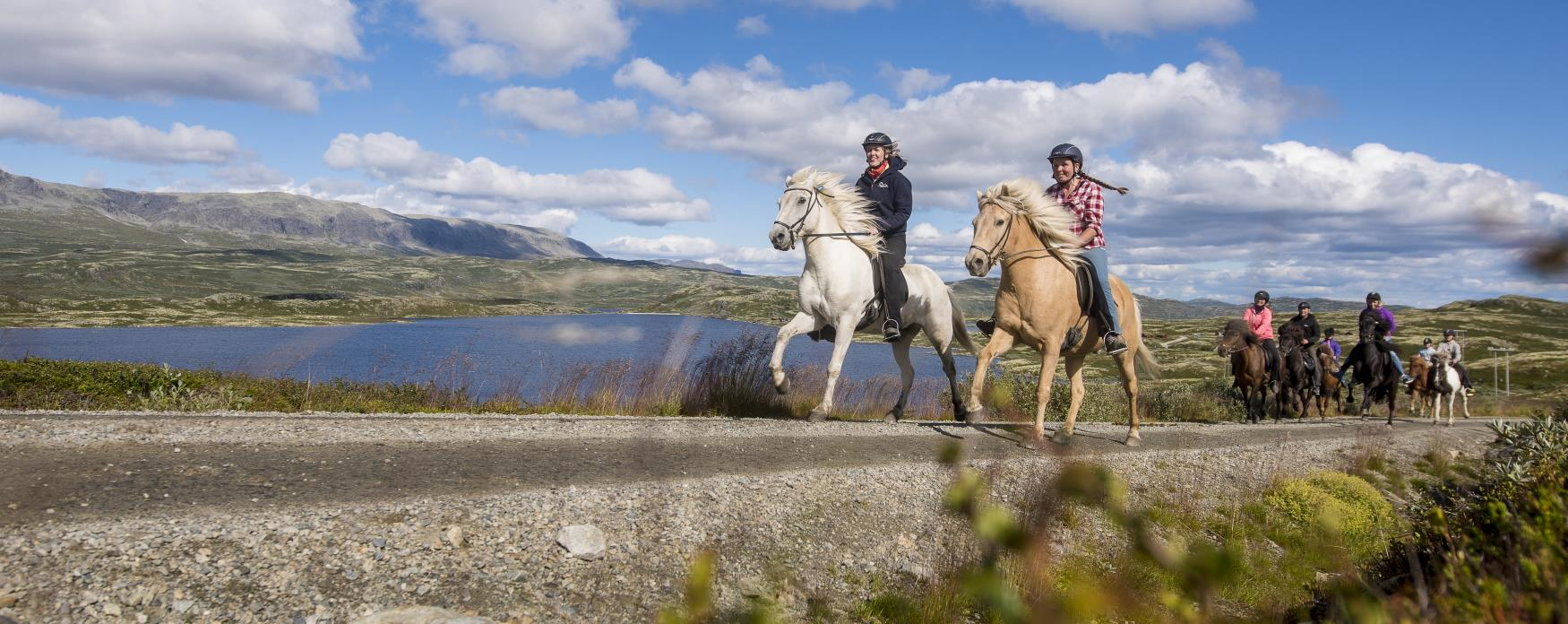 Family riding in Ål