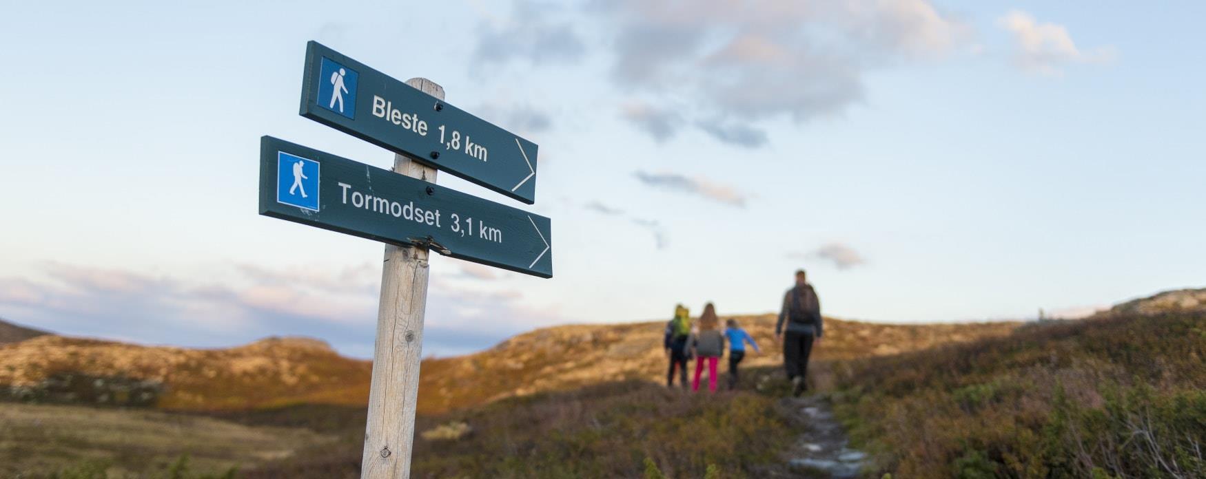 Hiking in Ål