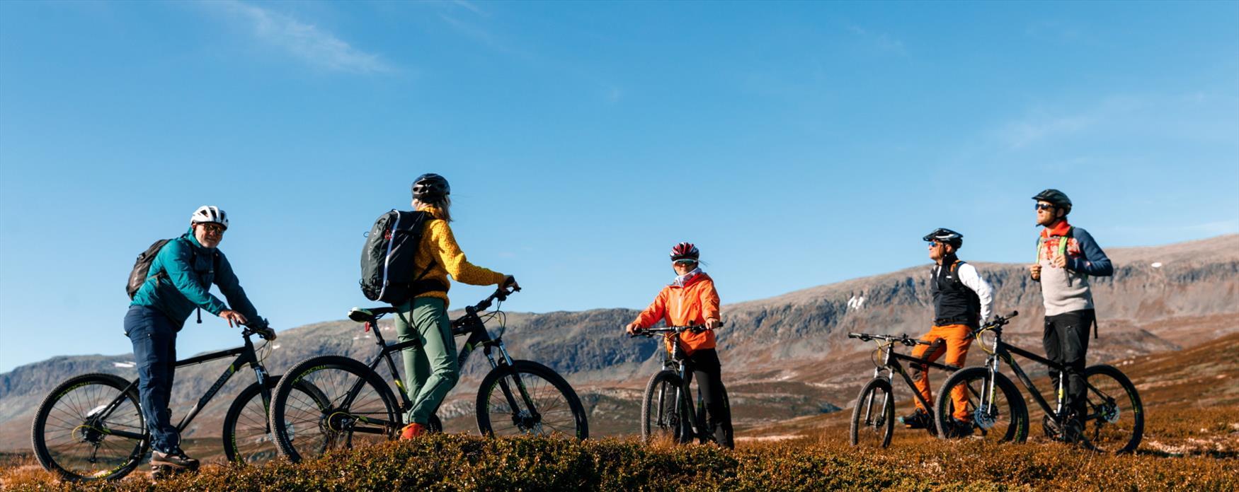 Folk på sykkeltur i Ål, i Hallingdal.