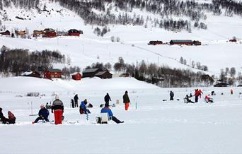 Pilking på Vatsfjorden