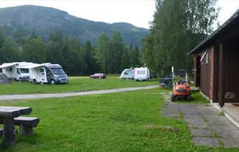 Ål Camping