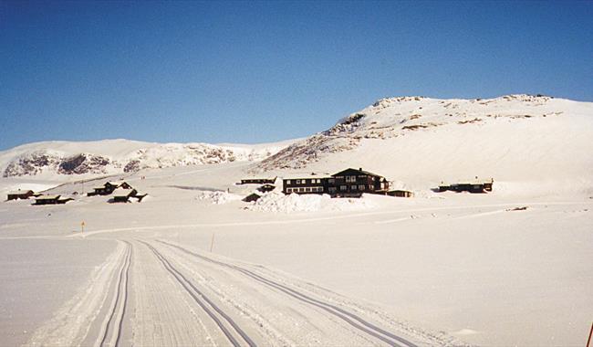 Flotte skispor med Bergsjøstølen i bakgrunnen