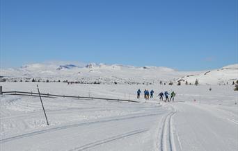 Folk på skitur I høyfjellslandskap