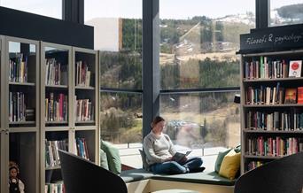 Ål public library