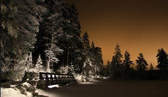 Tinnemyra om vinteren, i Notodden. Foto
