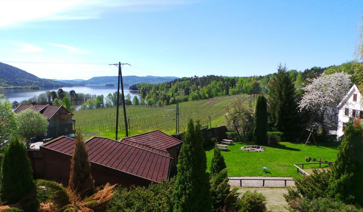 Utsikt over Norsjø