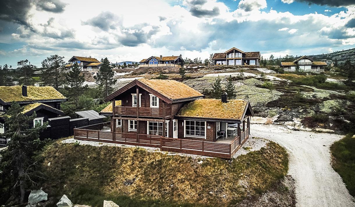 cabins at Vrådal Booking