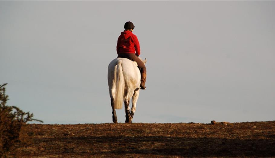 Horse riding (C) Graham Stones