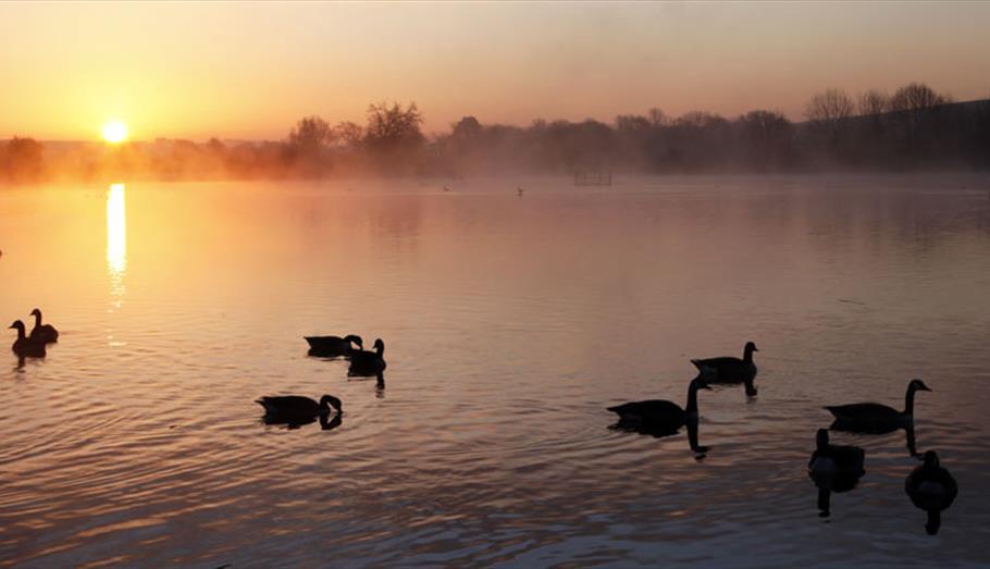 Langford Lakes Nature Reserve