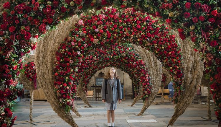Festival of Flowers Salisbury 2020