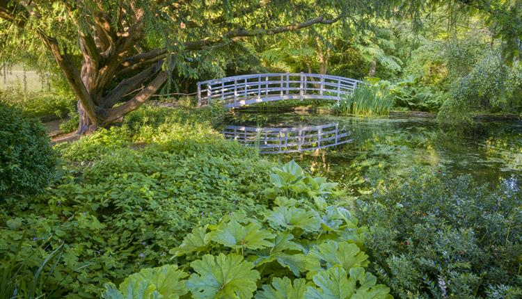 Dye Pool and Bridge - by Andrew Butler