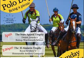 Stars Appeal Polo Picnic - Salisbury