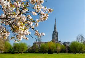 Threads through Creation - Salisbury Cathedral