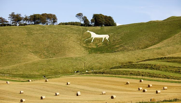The White Horse at Cherhill