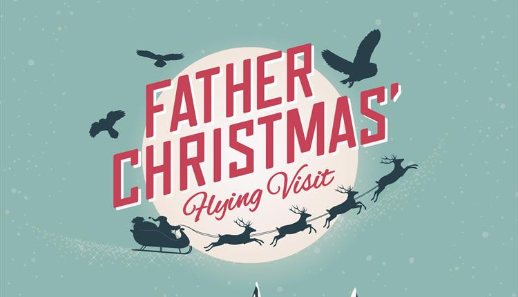 Father Christmas Flying Visit