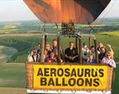 Aerosaurus Balloons Ltd - Group