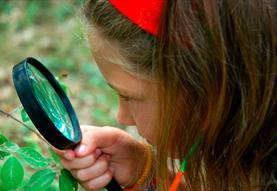 Nature Detectives at Roves Farm