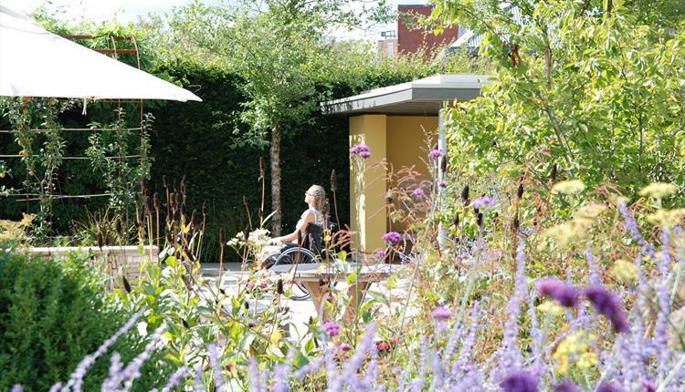 Horatio's Garden Salisbury National Garden Scheme Open Day