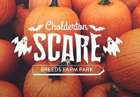 Cholderton SCARE Breeds Farm Halloween Half Term