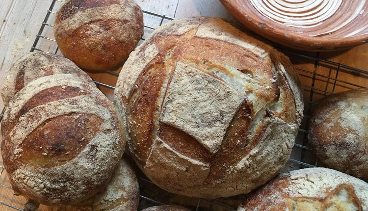 Sourdough Special Cookery Day With Dave Buxton