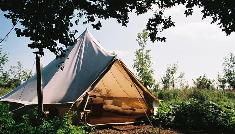 The Farm Camp