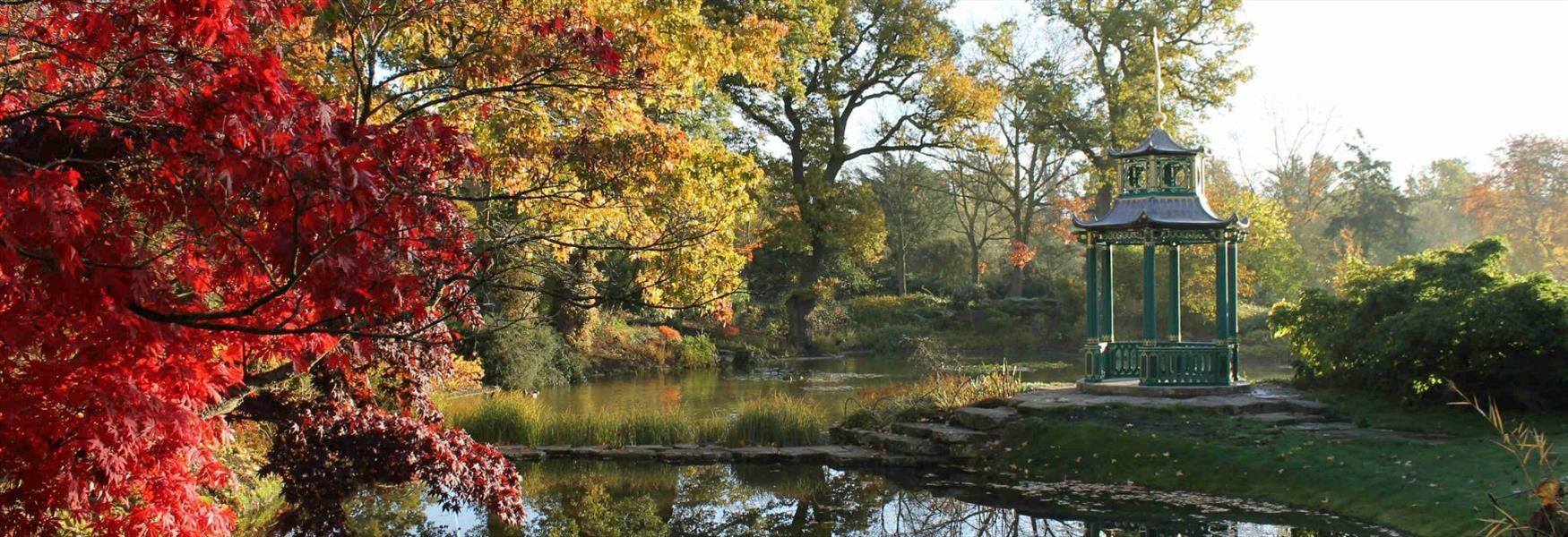 Autumn at Cliveden