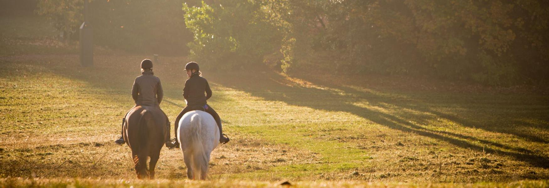 Riding at Coworth Park