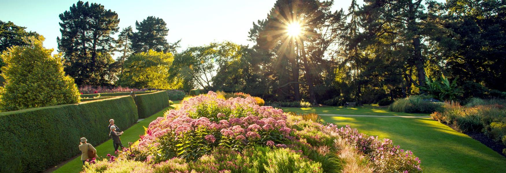 The Herbaceous Borders at The Savill Garden