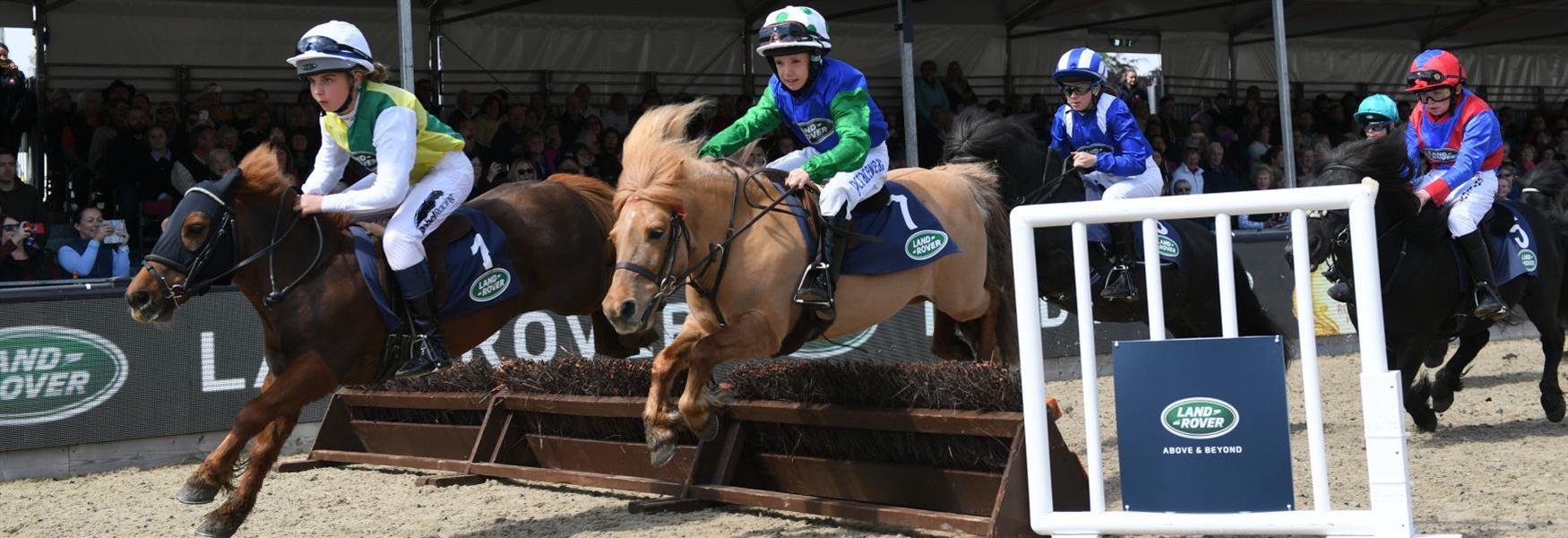 Shetland Pony Grand National, Royal Windsor Horse Show