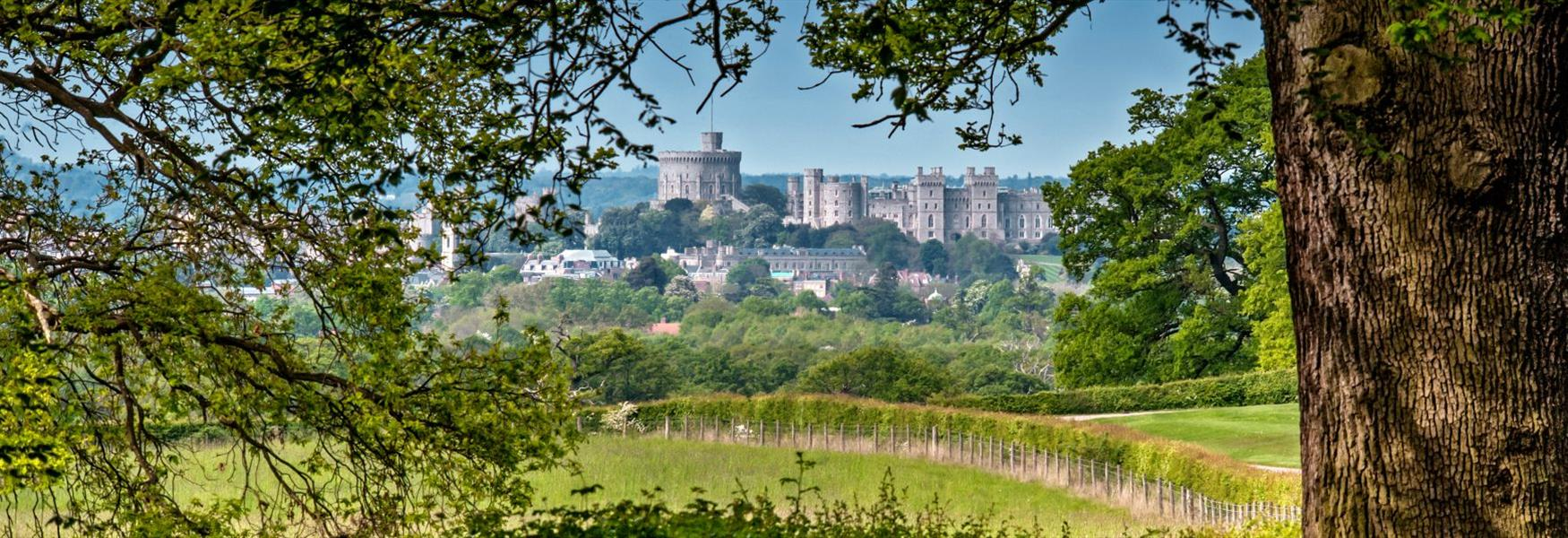Rediscover the Royal Borough