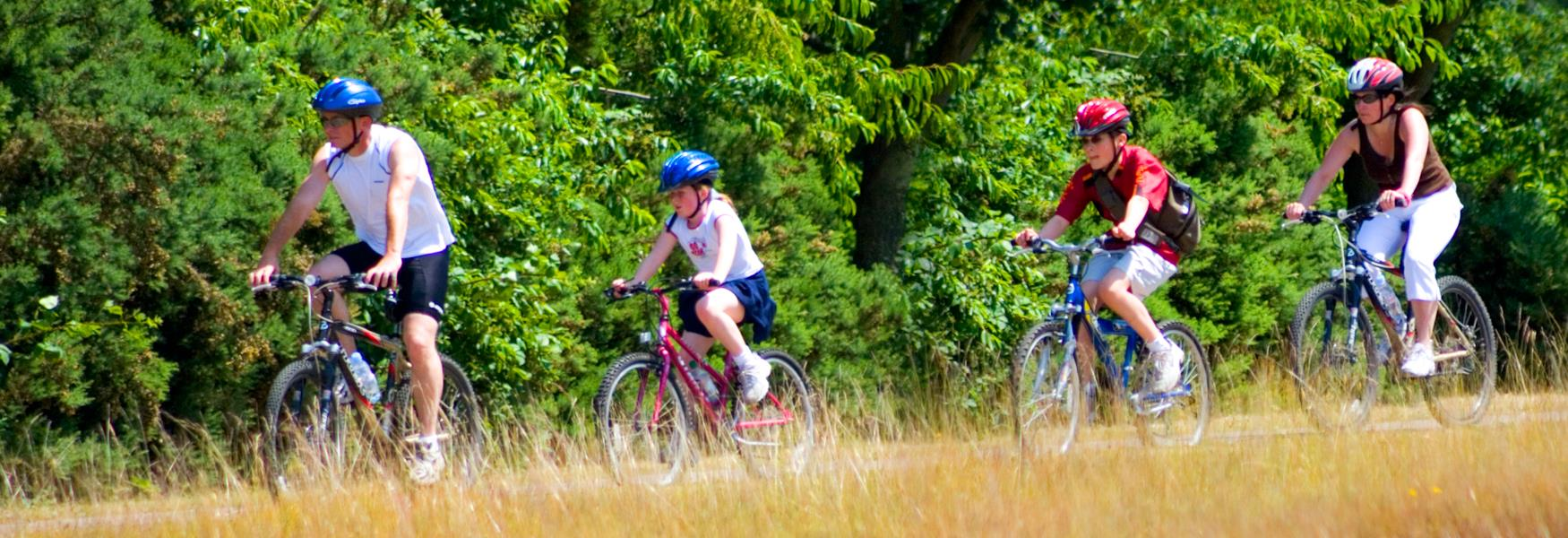 Cycling in Windsor Great Park
