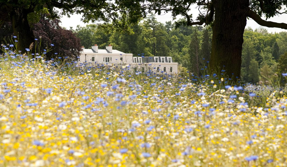 Coworth Park meadow and exterior