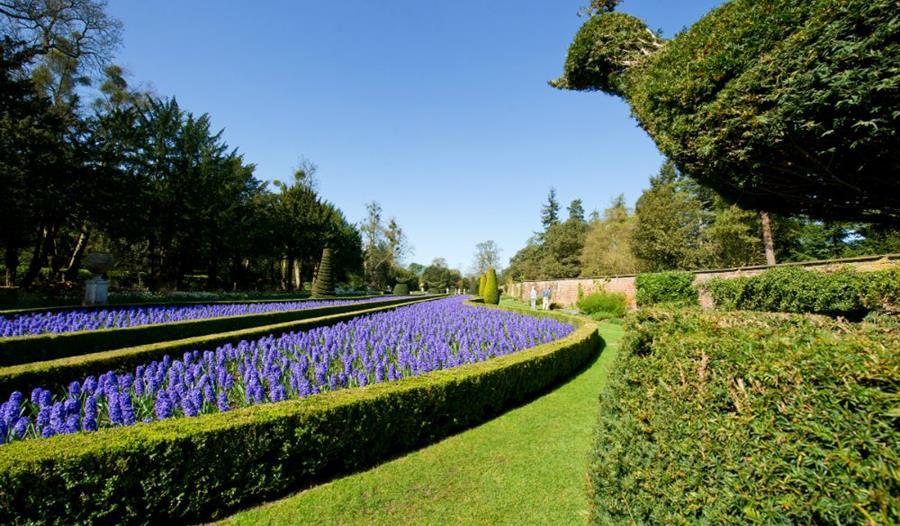 Cliveden's Long Garden