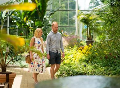 Visitors in The Queen Elizabeth Temperate House at The Savill Garden
