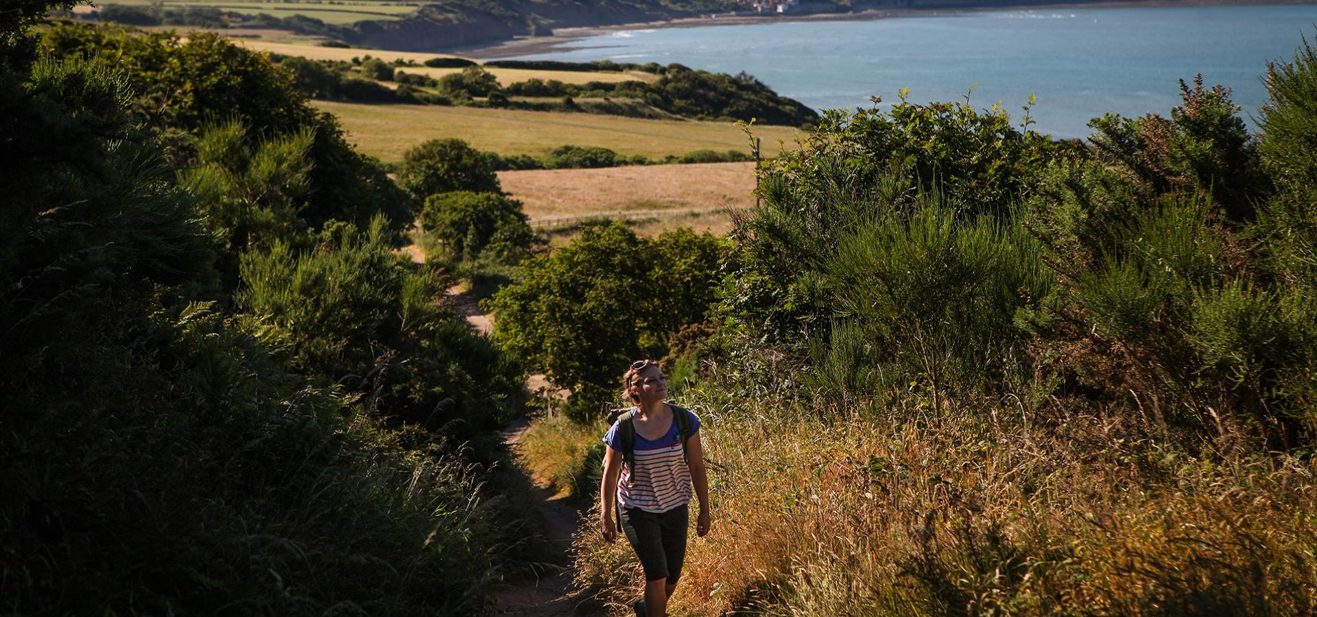 An image of Walking Trails Around Ravenscar  by Ceri Oakes