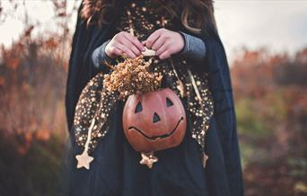 Young girl in witch costume holding a pumpkin container with flowers