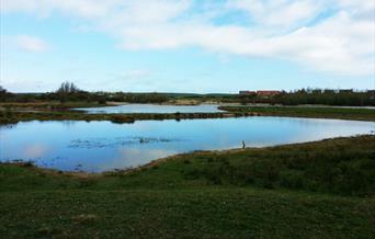 Burton Riggs Nature Reserve