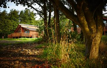Cropton Cabins - Forest Holidays