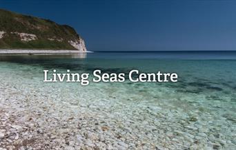 Living Seas Centre