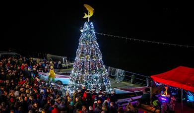 An image of Filey Fishtive Tree switch on