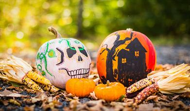 Ears of corn and pumpkins painted like a skull and haunted house