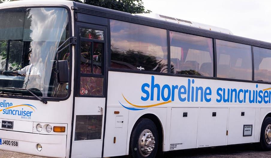 Shoreline Suncruisers, bus, busses