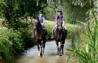 An image of Bilsdale Riding Centre