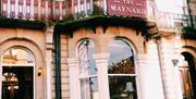 An image of The Maynard