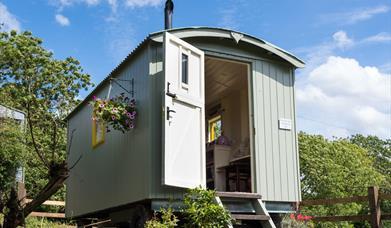 An image of Rosedale Light Shepherds Hut
