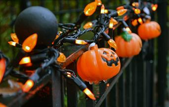 Black iron fence with orange pumpkin lights wrapped around