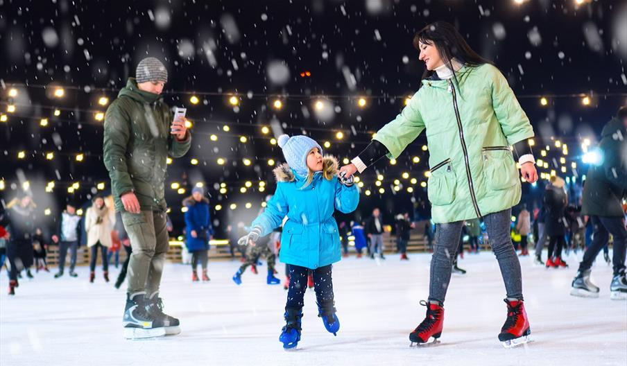 An image of a family Ice Skating