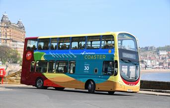 Coaster Buses