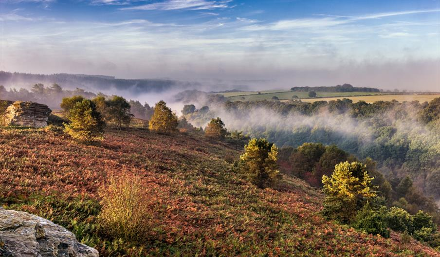Dalby - The Great Yorkshire Forest