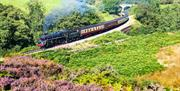 Image of the North Yorkshire Moors Railway